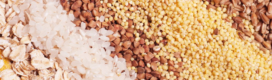 Grains-Rice-Flour-banner